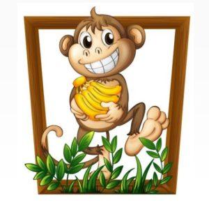 داستان صوتی مصور میمون و ماهی - لیبرنو